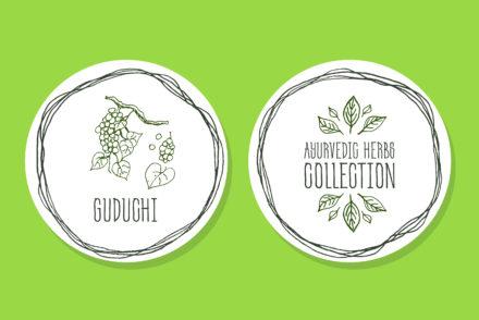 the best Guduchi benefits