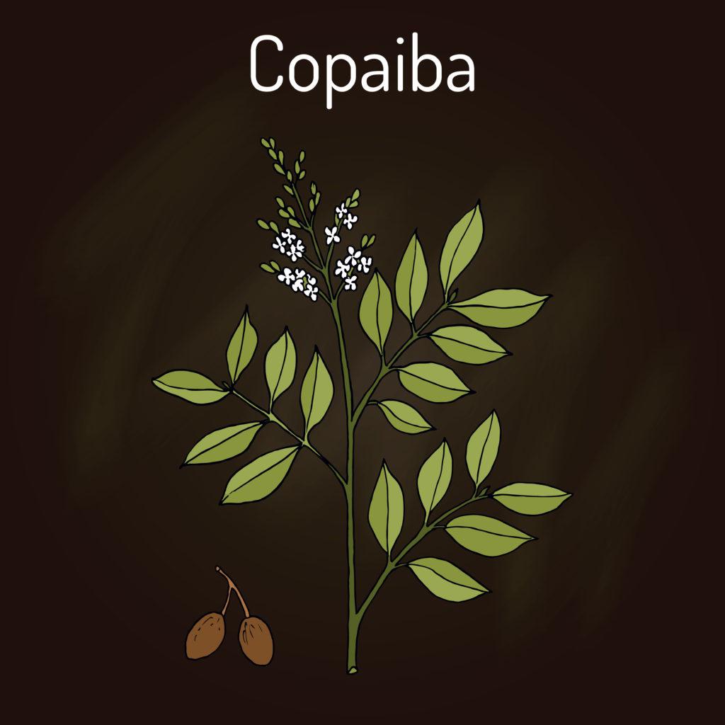 Copaiba oil list of benefits