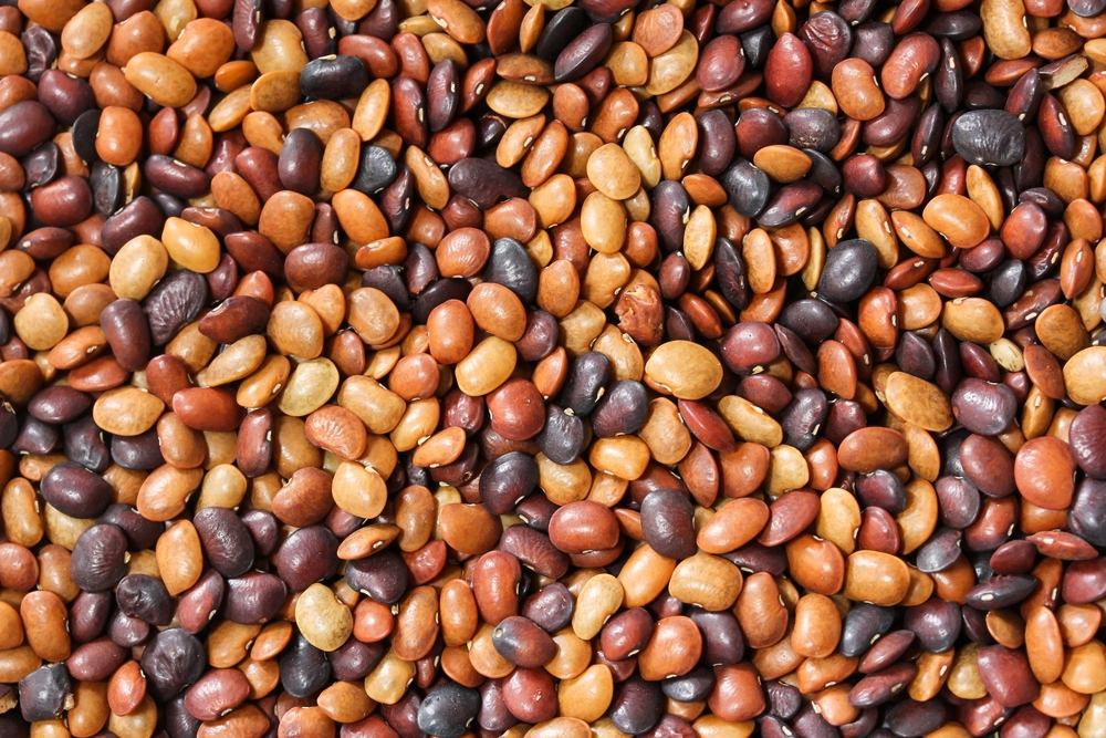 HOW CAN HORSE GRAM HELP WITH WEIGHT LOSS?