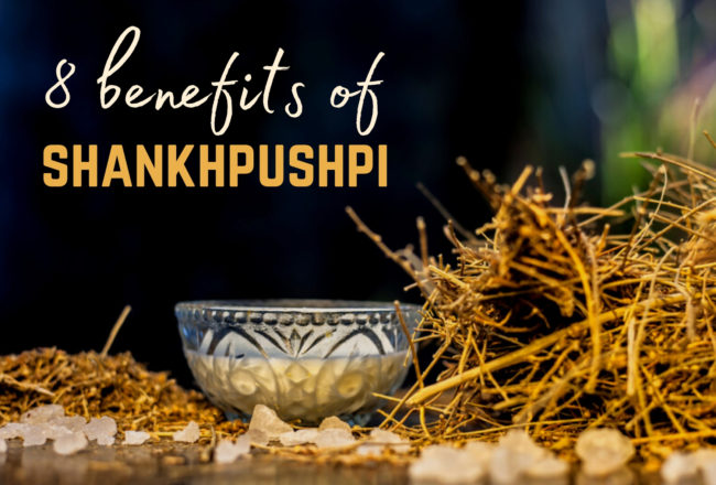health benefits of Shankhpushpi