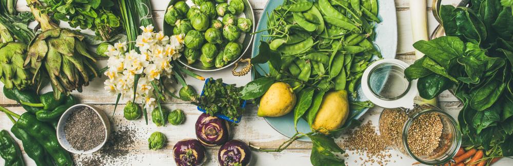 paleovedic diet what is it