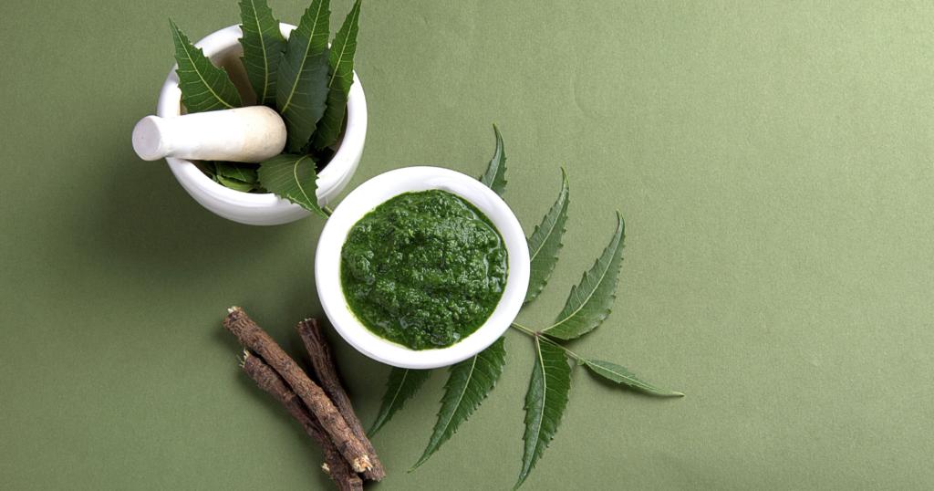 what are the main ayurvedic herbs