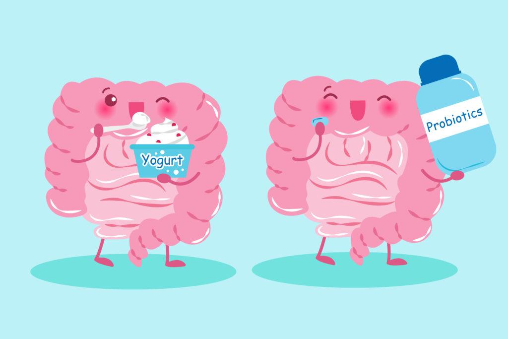 what happens when you stop taking probiotics